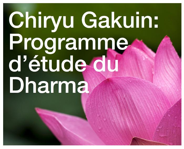 Reprise des cours du dharma au centre